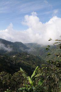 """Heimat des Kaffees in Kolumbien: die """"Zona Cafetera"""""""